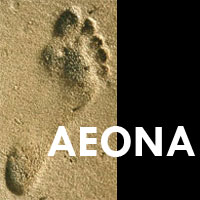 Aeona helps you take a step forwards on your journey to where you want to be